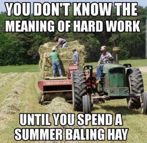 Anyone spend time on a farm? Country Girl Life, Country Girl Quotes, Country Farm, Country Boys, Girl Sayings, Country Living, Country Music, Country Sayings, Farm Jokes