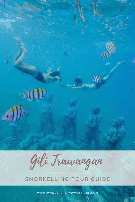 Turtles Gili Trawangan Snorkeling Tour Snorkeling Gili Trawangan Things To Do On Gili Trawangan Gili Islands #bali #lombok #gilit #gilitrawangan #turtles #swimwithturtles #ocean #bucketlist