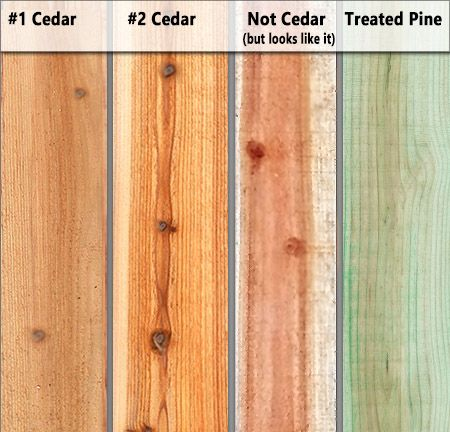 Inform Yourself Know The Difference Between Types Of Cedar A Better Fence Company Veteran Owned Local A Fen Western Red Cedar Lumber Red Cedar Wood Cedar