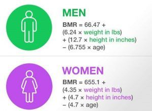 https://takedietplan.com/what-is-bmr-how-to-check-your-bmr/ | Basal  metabolic rate, Bmr, How to plan