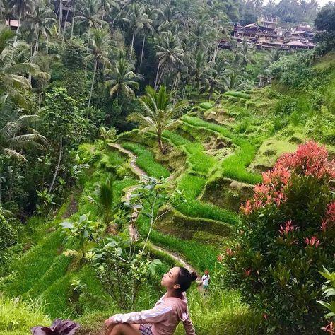 Rekomendasi Tempat Wisata Alam Bali Tegalalang Ubud In