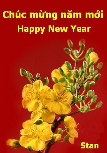 chc mng nm mi happy new year 2009 to all my dear vietnamese i wish all my vietnamese free new year pictures pinterest vietnam and learning - Chinese New Year 2009