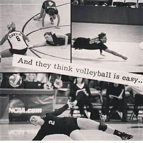 UMM lemme have a chat with you if you think volleyball is easy Volleyball Jokes, Volleyball Problems, Volleyball Motivation, Volleyball Drills, Volleyball Pictures, Volleyball Players, Beach Volleyball, Volleyball Training, Coaching Volleyball