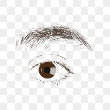 Left Eye And Eyebrow Illustrator Eyes Clipart Black And White Human Organs Left Eye Png Transparent Clipart Image And Psd File For Free Download Tekenen