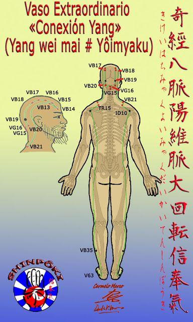 Vaso Maravilloso Yang Oe Conexión Yang Yang Wei Mai Yôimyaku También Llamado Meridiano Extraordinario Conexión Yang Yang Yang Yang Eres Maravilloso