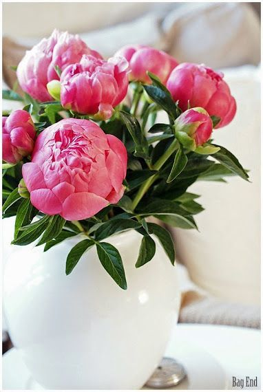 Pink Peony Vaaleanpunainen Pioni Pink Peonies Pink Peonies Fresh Flowers Anemones Flowers Gardening F In 2020 Pretty Flowers Beautiful Flowers Very Beautiful Flowers