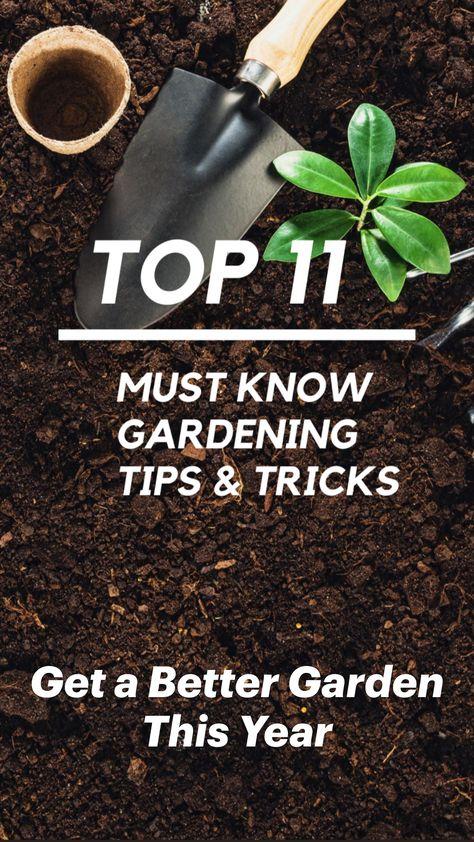 Top 11 Must Know Gardening Tips & Tricks