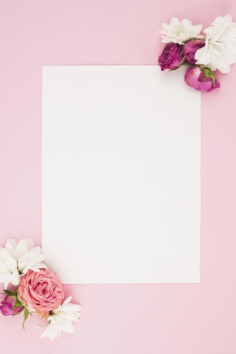 Papel Branco Em Branco Com Flores Frescas Contra Fundo Rosa