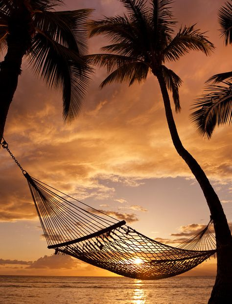 Swinging at sunset ... what could be sweeter?