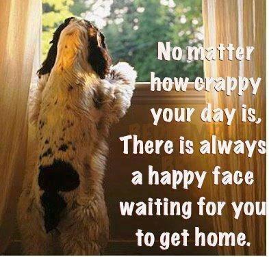 Puppies...so true
