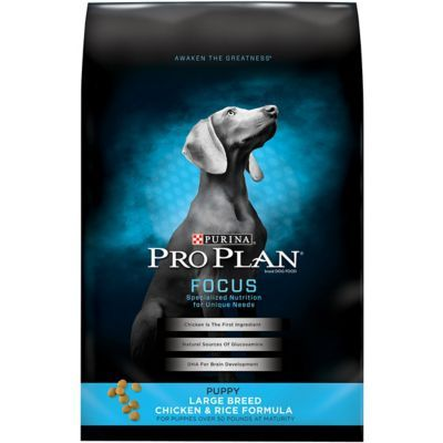 Purina Pro Plan Focus Large Breed Chicken Rice Formula Dry Puppy