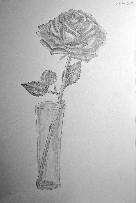 Rosen bleistiftzeichnung  Bleistiftzeichnung #Bleistiftskizze #Anfänger #Rose #Zeichnen ...