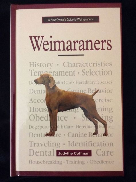 A New Owner S Guide To Weimaraners By Judythe Coffman 1998