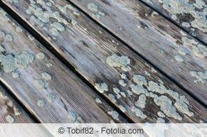 Terrassenplatten Reinigen Moos Und Algen Von Terrasse Entfernen Gartendialog De Terrassenplatten Reinigen Pflastersteine Holzterrasse