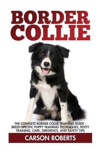 Border Collie The Complete Border Collie Training Guide Breed