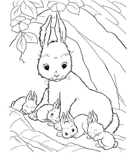 Brer Rabbit Coloring Pages Free Lukisan Warna