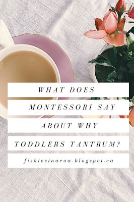What Does Montessori Say About Why Toddlers Tantrum?