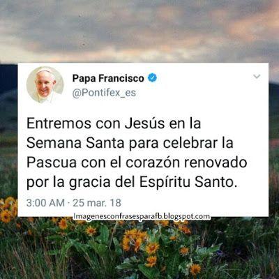 Frases Del Papa Francisco En Semana Santa Pascua