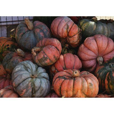 East Urban Home Pumpkins Cotton Red Area Rug Red Area Rug Planting Pumpkins Blue Pumpkins