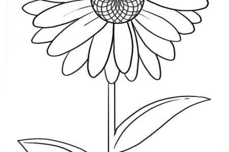276 Dibujos De Flores Para Colorear Hermosos Disenos Para Darles Color Dibujos De Flores Dibujos Flores