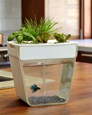 Aqua Farm - Self-cleaning fish tank that grows food. Fish waste feeds the plants. Plants clean the water. Includes everything you need to get started as well as organic seeds and a discount coupon for a Betta fish.