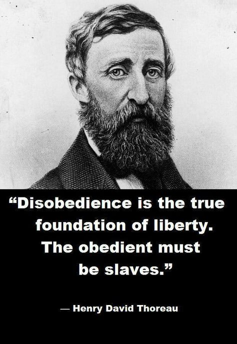 Top quotes by Henry David Thoreau-https://s-media-cache-ak0.pinimg.com/474x/4b/24/75/4b2475d9cc513aa7b57643db91b8b5a7.jpg