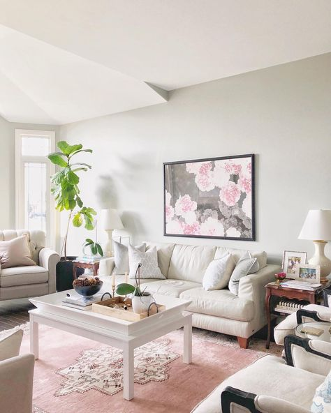 Traditional Living Room With A Pink Rug With Images Pink Rug