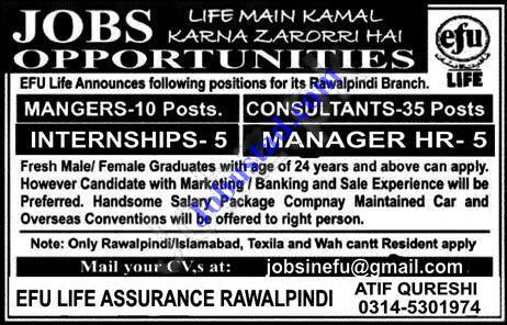 Efu Life Insurance Jobs January 2020 Jobs In Efu Insurance In 2020 Job Jobs In Pakistan Life