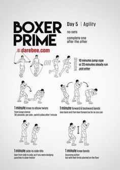 Boxer Prime 30 Day Fitness Program Boxer Workout Boxing Training Workout Home Boxing Workout