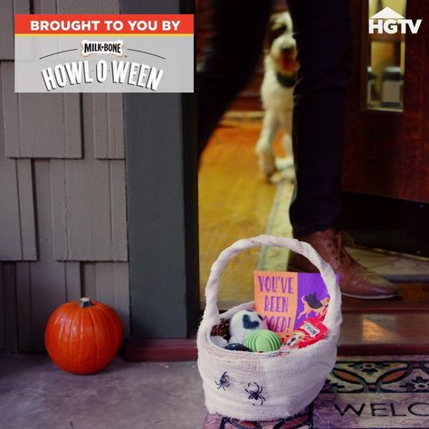 Make a pup-friendly boo basket that's a little bit trick and a whole lot of treat. 🎃 🐶 Give your neighborhood doggos something to bark about with a few DIY boo baskets made with love. 🦴 Sponsored by Milk-Bone