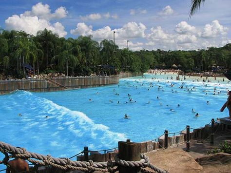 The Surf Pool at Typhoon Lagoon ~ Walt Disney World Resort l Lake Buena Vista, Florida