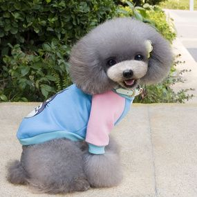 Ample Appoint Q Version Pets Hoodie Poodle Tidy Dog Clothing Miniature Canine Two Feet Clothing Autumn And Winter New Pet Supplies Wholesale Pet Supplies Pets