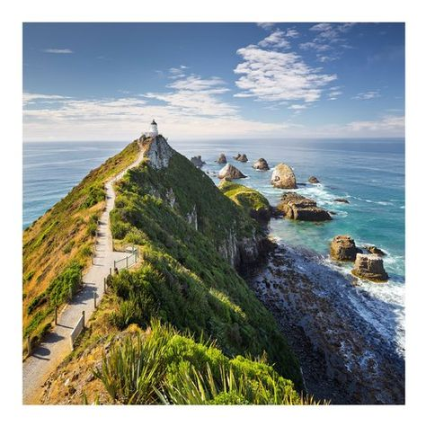 East Urban Home Lighthouse & Ocean, Nugget Point, New ...