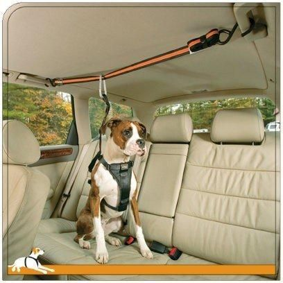 Gadgets To Keep Your Dog Safe & Your Car Clean! Kurgo Zip Line attached hand bars on both sides of rear seat.: © Kurgo products keep pets safe!Kurgo Zip Line attached hand bars on both sides of rear seat.: © Kurgo products keep pets safe!