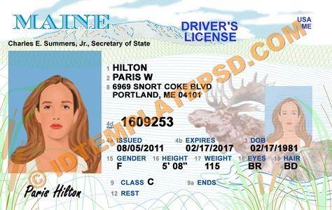 This is georgia usa state drivers license psd photoshop this is georgia usa state drivers license psd photoshop template on this psd template you can put any name address license no dob etc and m pronofoot35fo Gallery