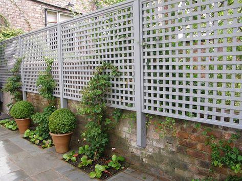 Piante Per Recinzioni Giardino.Recinzioni Giardino 25 Idee Fra Legno Metallo E Piante
