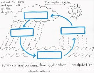 The Hydrologic Cycle | Worksheets, Cycling and Water