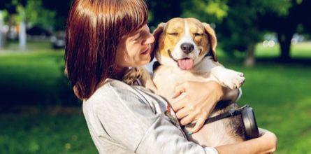 Breed Information Pets Pet Insurance Pet Advice