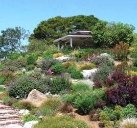 4b8121b26aeff58dc129f1b04ff5bc18 - Care And Maintenance Of Southern California Native Plant Gardens