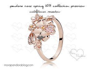 19d0712f2e8b2 Pandora Rose Spring 2018 preview | Pandora | Pandora rose gold ...