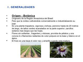Manejo Tecnico Del Cultivo De Maracuya C Ch Maracuya Plantas Trepadoras Plantas