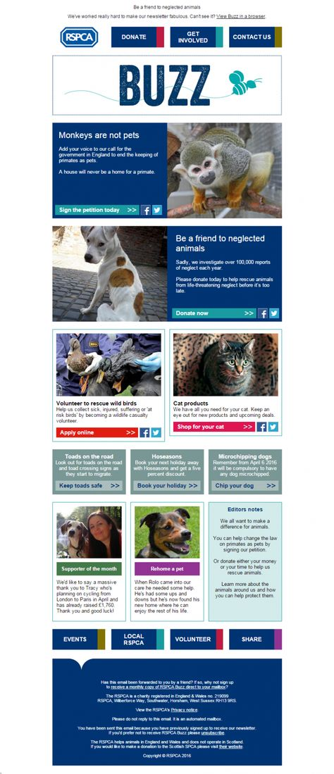 Rspca Be A Friend To Neglected Animals Animals Pets Friends