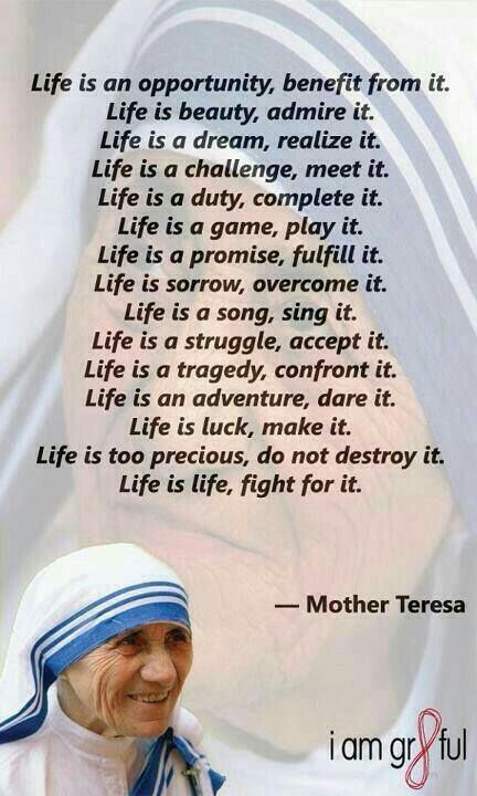 Life Quotes Mother Teresa Amusing Jmj  Nashville Is My New Home As Of June 23 2015I Prayed And