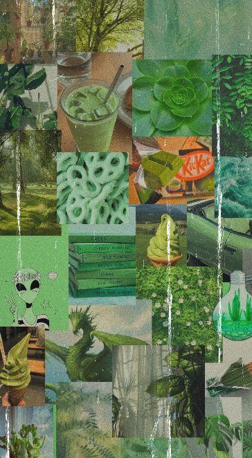Green Aesthetic Wallpaper Aesthetic Wallpapers Sage Green Wallpaper Green Aesthetic