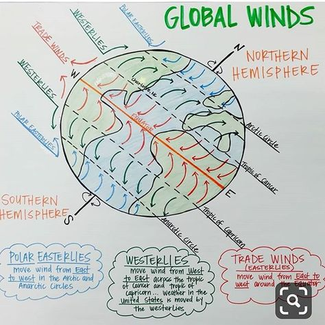 Global Winds Anchor Chart (Polar Easterlies, Westerlies, and Trade Winds)
