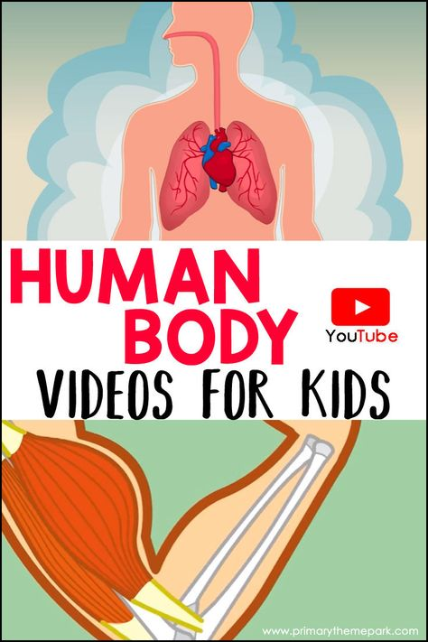These videos will be used with the human body unit. Students will take a quiz after watching each video. Kid Science, Preschool Science, Elementary Science, Science Lessons, Teaching Science, Science Activities, Science Experiments, Science Biology, Science Classroom