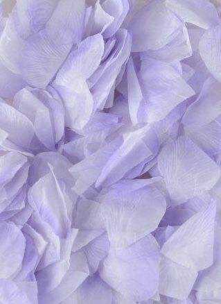 Pin By Mirror Image On Lavender The Grown Up Pink In 2020 Lavender Aesthetic Silk Flower Petals Flower Petals