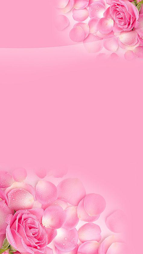 Fundo floral cor - de - Rosa H5, H5 Background, Flores, Pétalas, Imagem de fundo
