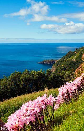 Colors of the Azores islands, São Miguel Island / Azores Portugal