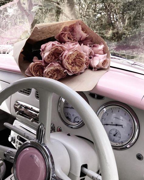 "just helen marie on Instagram: ""Let the long weekending begin beautiful people ♡ . . . . . #postwhatyoulove #roses #pinkfigaro #pinkinmyfeed #ihavethisthingwithpink…"""